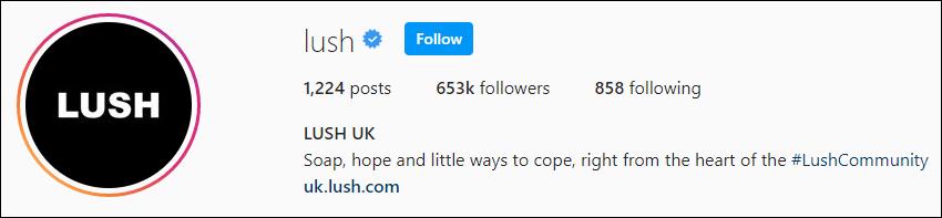 LUSH Instagram - border